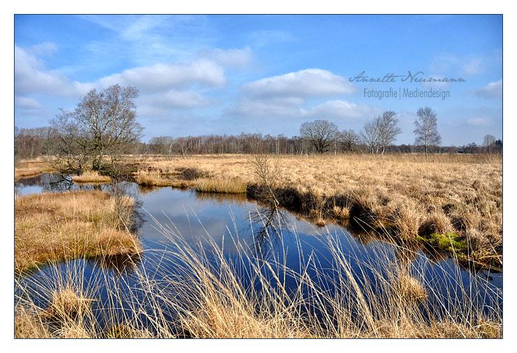 Fockbeker Moor