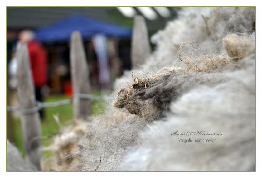 Noch mehr Wolle